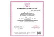 职业健康管理体系中文版